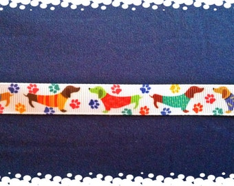 3/4 Wide Custom Made Colorfull Doxie Pattern Adjustable Collar and Matching Leash