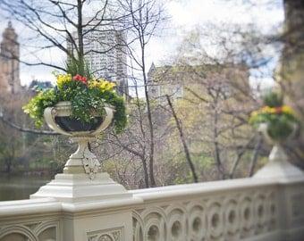 Bow Bridge in Central Park, New York City in the springtime