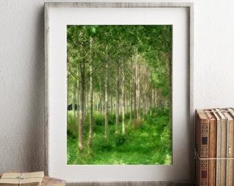Forest Photograph, Printable Art, Digital Download Photography, Wildlife Decor
