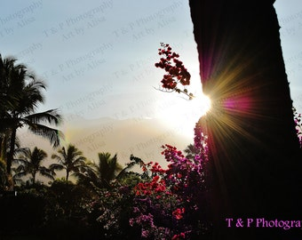 Sunrise, digital download photography, wall art, instant download, printable photo, fine art gift, Hawaii, home decor, turtlesandpeace