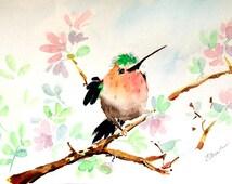 Hummingbird art Original watercolor painting Hummingbird Bird painting Bird wall art Bird lover gift Hummingbird gift Hummingbird picture
