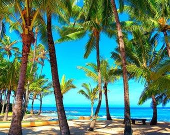art print, wall decor, tropical photography, home decor, fine art, beach pictures, turquoise, palm trees, ocean, beach decor, maui, hawaii