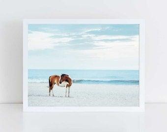 Wild Horse Photography, Beach Decor, Horse Wall Art, Equine Print, Nursery Decor, Horse Photo, Assateague Island, Horse Photo, Pretty Pony