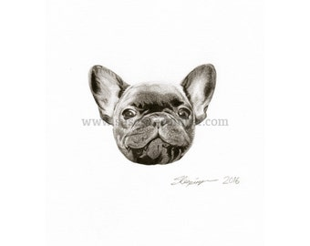 French Bulldog Head Limited Edition Print