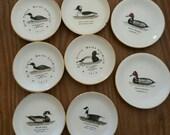 Duck decoy plates