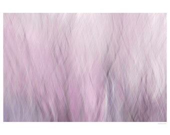 Abstract Photography PRINT, Lilac Branches, Wall Art