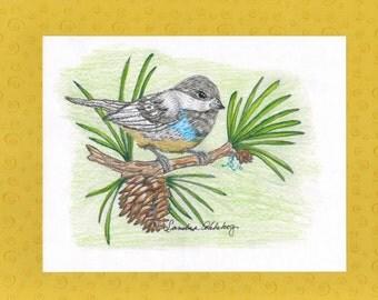 Pencil, Pine cone bird