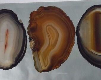 Natural Brazil Agate Slices Geode Polished Slab Quartz Lot (5) - N2