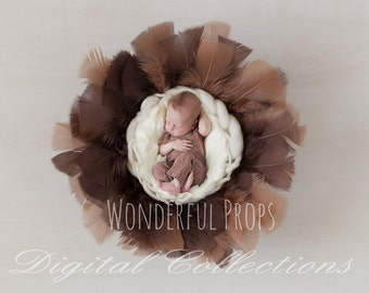 Digital Newborn Photography Brown Feathers Nest Prop Backdrop