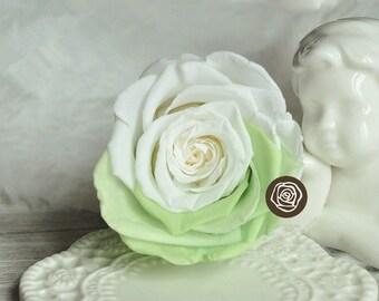 6-7cm green white gradient Preserved Fresh Rose Flower DIY Material ,Dried Rose Flower