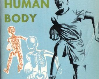 Wonders of the Human Body