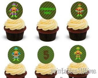 Ninja Turtle Party Circles- TMNT Birthday- TMNT Cupcake toppers- Tags