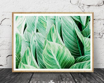 Tropical Wall Art etsy :: your place to buy and sell all things handmade