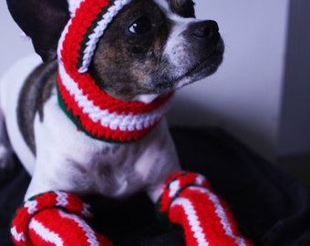 Christmas Dog costume Snowflake and Candy Cane Dog Hat Dog legwarmers Dog suit M size Pug suit Boston terrier Pugs Jack Russel