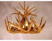 Reproduction Antler Whitetail Deer Chandelier Light RS-1, Rustic
