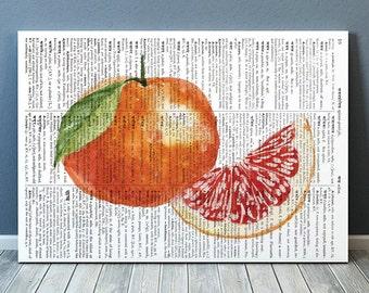 Grapefruit print Fruit decor Kitchen poster Dictionary print RTA1941