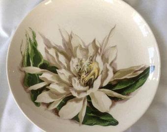 "Vintage Santa Anita Ware ""Night-Blooming Cereus"" Dinner Plate - Flowers of Hawaii -  Made in USA - 1949"