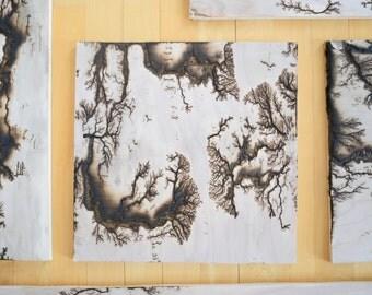 """12""""x12"""" Lichtenberg Figure"""