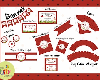 Ladybug Birthday package Printable DIY - Ladybug Birthday Party kit