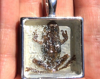 Frosted Frog Necklace