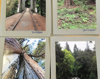 Santa Cruz Mountains Greeting Cards