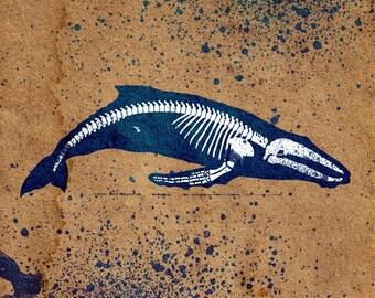 Whale Skeleton Stencil