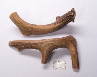 "X-Large ""Whole"" Deer Antler Dog Chew"