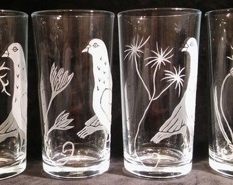 High-Ball Glass. Pigeons With Wild Flowers. (Set/Series of 4 Designs) PIGEON LOVER'S GIFT