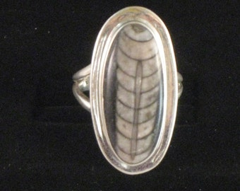 Beautiful orthoceras sterling silver ring size 7.5