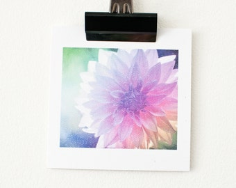 BLANK GREETING CARD // Flower Cards, Photo Cards, Birthday Card, Love, Thank You, Congratulations, Anniversary Card, Thinking of You Card