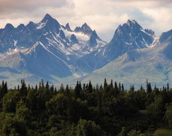 Forest - Mountains - Mountain Forest - Mountains Photo - Mountain Landscape - Digital Photography - Digital Download - Living Room Decor