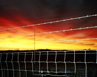 Montana sunrise through a barb wire fence.