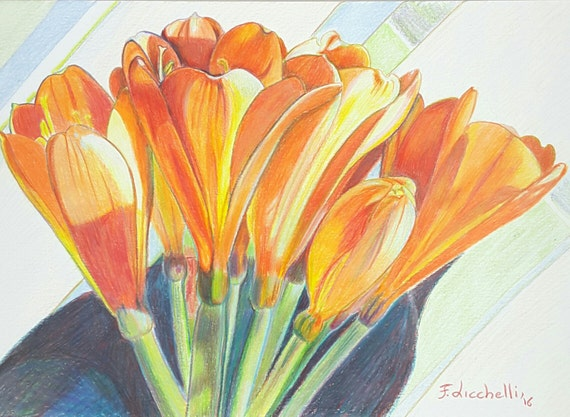 Orange clivia, original botanical drawing, colored pencils on paper, elegant gift idea for her, traditional and romantic decore, wall art.