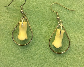 Coyote foot bone earrings