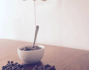 Organic Vanilla Coffee Body Scrub