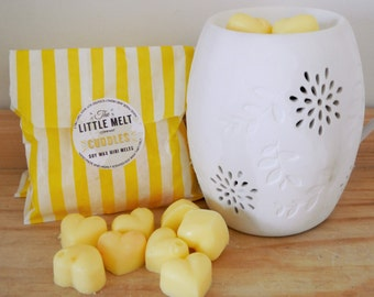 10 Cuddles Soy Wax Melts - Highly Scented