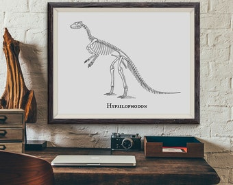 Dinosaur Print, Hypsilophodon Prehistoric Dinosaur Skeleton Fossil Bones Vintage Illustration, Paleontology, Boys Bedroom Art, Not Framed