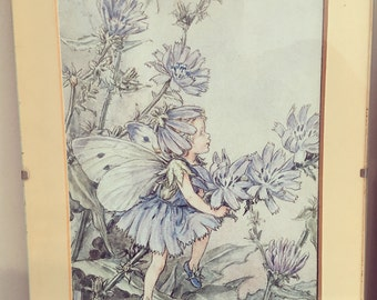 The Chicory Fairy, flower fairy framed print, vintage illustration, flower fairy bedroom, vintage prints for children, girls.