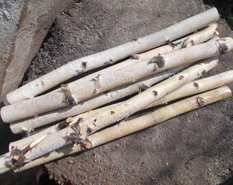 15 wood stick, birch sticks, wood decor, Birch Log, White Birch branches, decorative birch wood, birch logs, craft wood, eco wood, eco decor