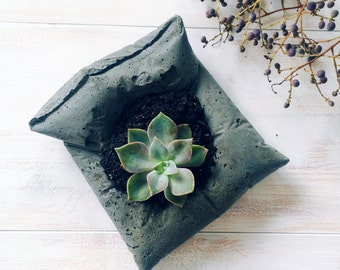 Concrete Pillow Succulent planter