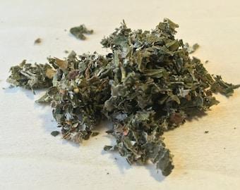 Raspberry, Rubus idaeus, Leaf ~ Sacred Herbs from Schmerbals Herbals