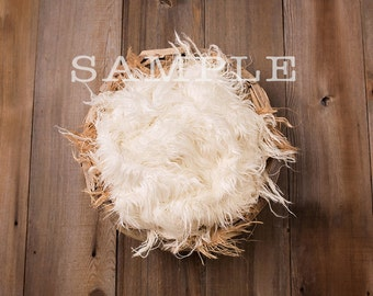 Nest Driftwood Bowl Newborn Digital Prop/ Backdrop