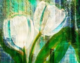 Yesterday's Tulips