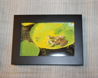 Leap Frog - Framed Picture