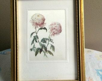 Vintage chrysanthemum framed art - printed on silky fabric - golden wood frame