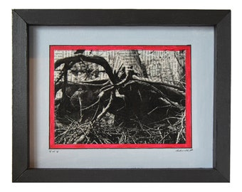 Roots (Nature Series) - Print 4