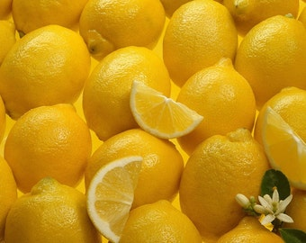 10 Lemon tree seeds! delicious fruit!! Fresh seeds From Portugal!