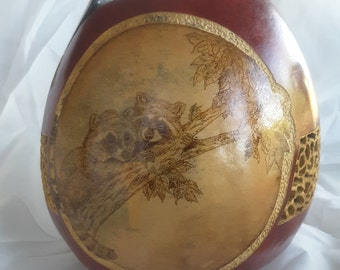 Gourd with racoon pyrography