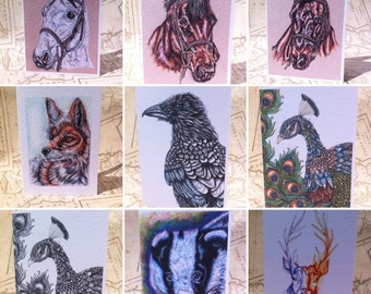 4x A6 Greeting Card, Greetings card, cards,wildlife cards, art cards, mixed cards, animal cards, fantasy cards, illustrated cards,Blank card