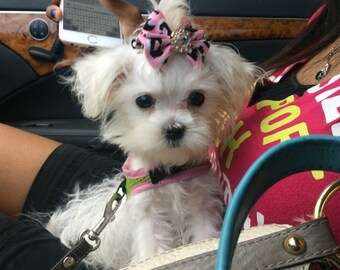 Leopard/ Cheetah Print Pink bow with Crystal For Puppy